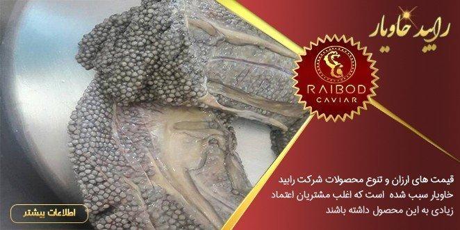 شرکت رایبد خاویار تولید کننده خاویار ایرانی