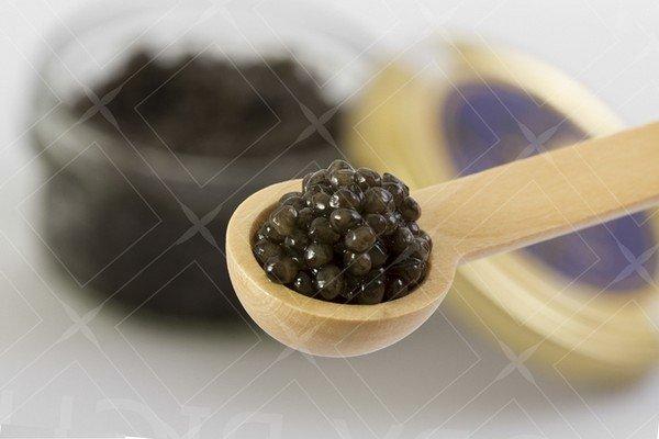 Raibod caviar 05