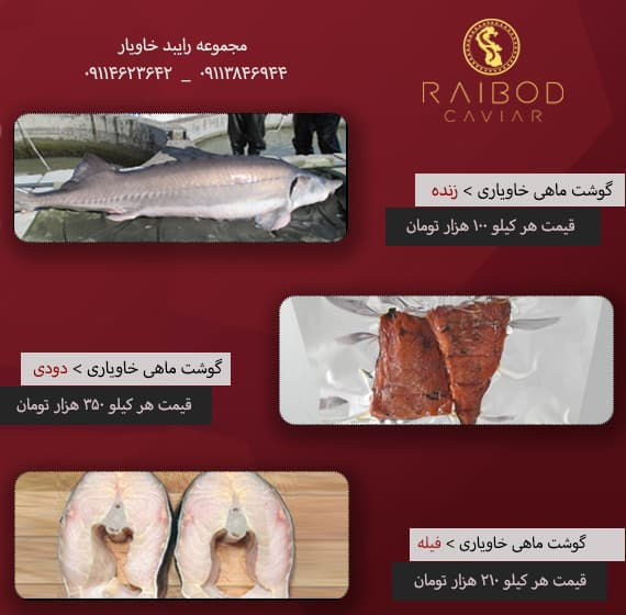 Sturgeon meat price list