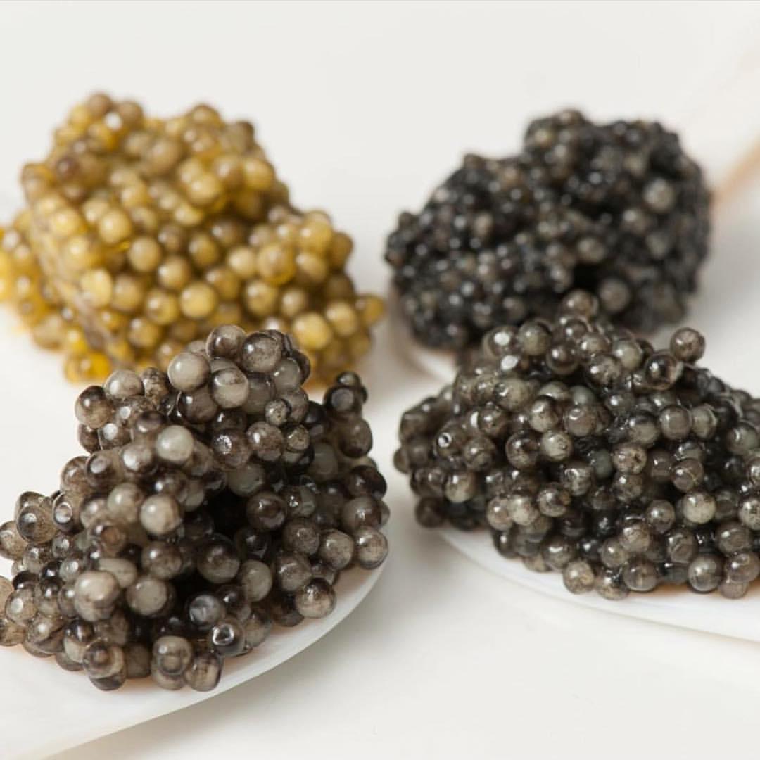 bestblackcaviar-20180328-0001